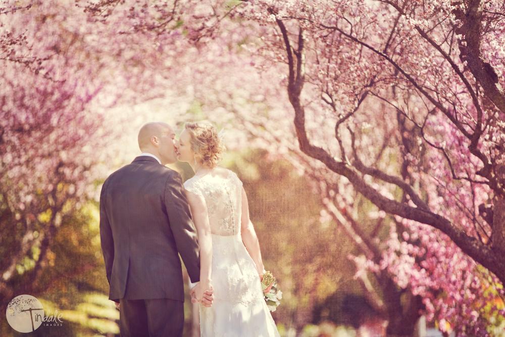 jane and john wedding blog 1 the two j's....  {southern sydney wedding photographer}