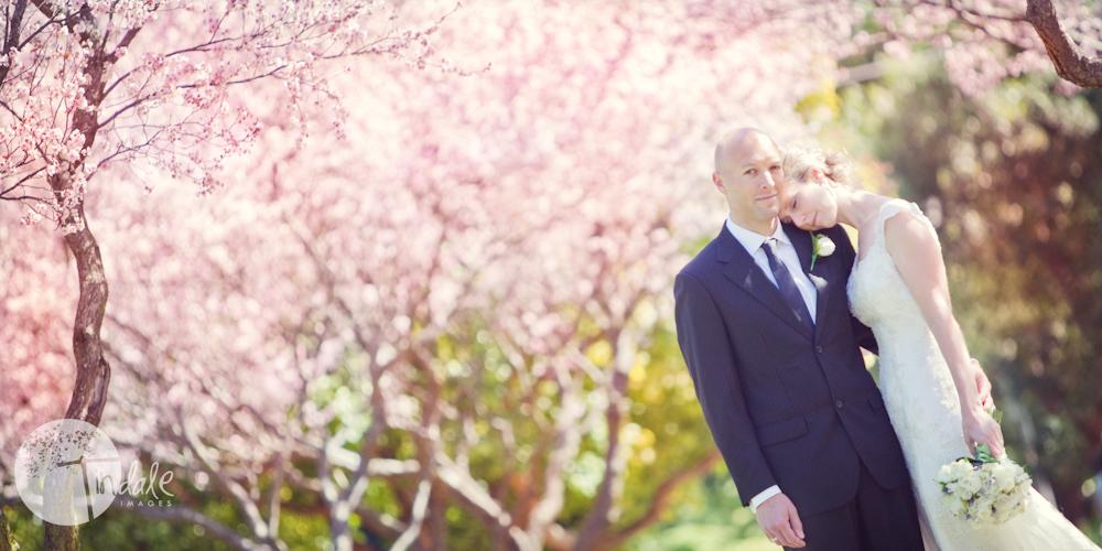 jane wedding blog 19 the two j's....  {southern sydney wedding photographer}