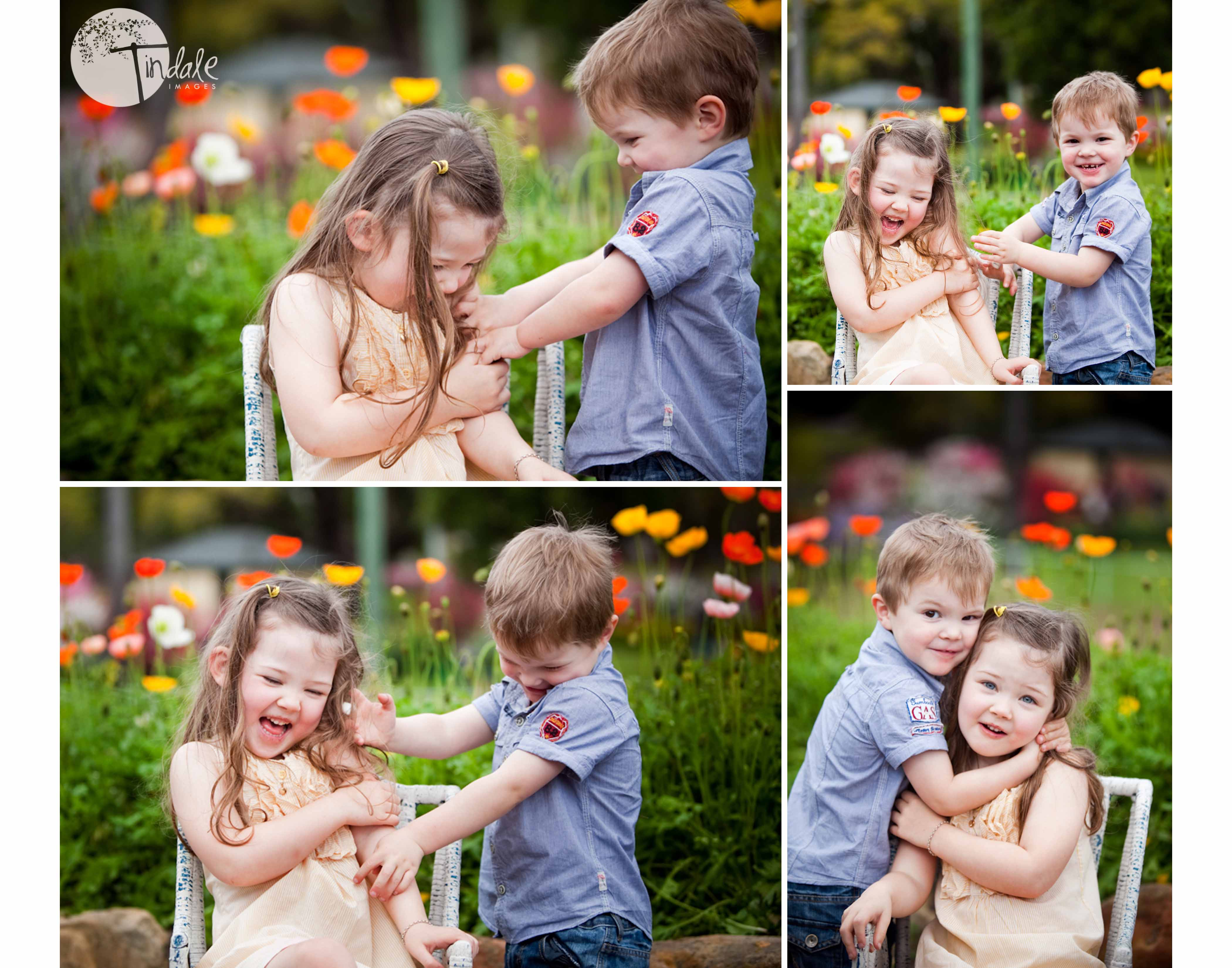 blossom delight - southern sydney family photographer