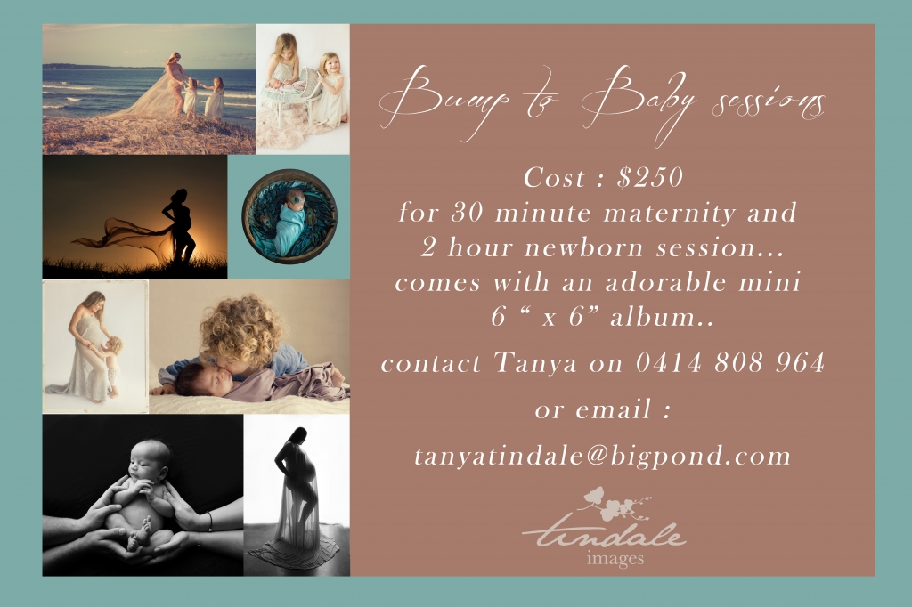 bump to baby 2016 1024x682 Christmas mini sessions announced... now also the week of the 13th till the 18th ...