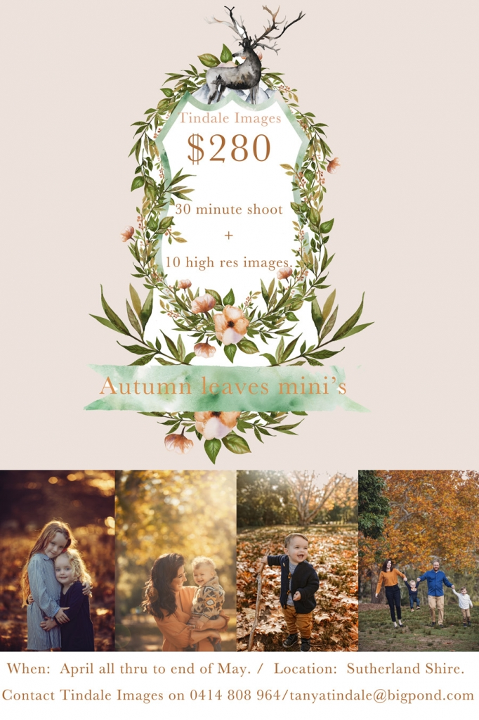 storyboard 1 682x1024 autumn mini shoots announced and twins discount...
