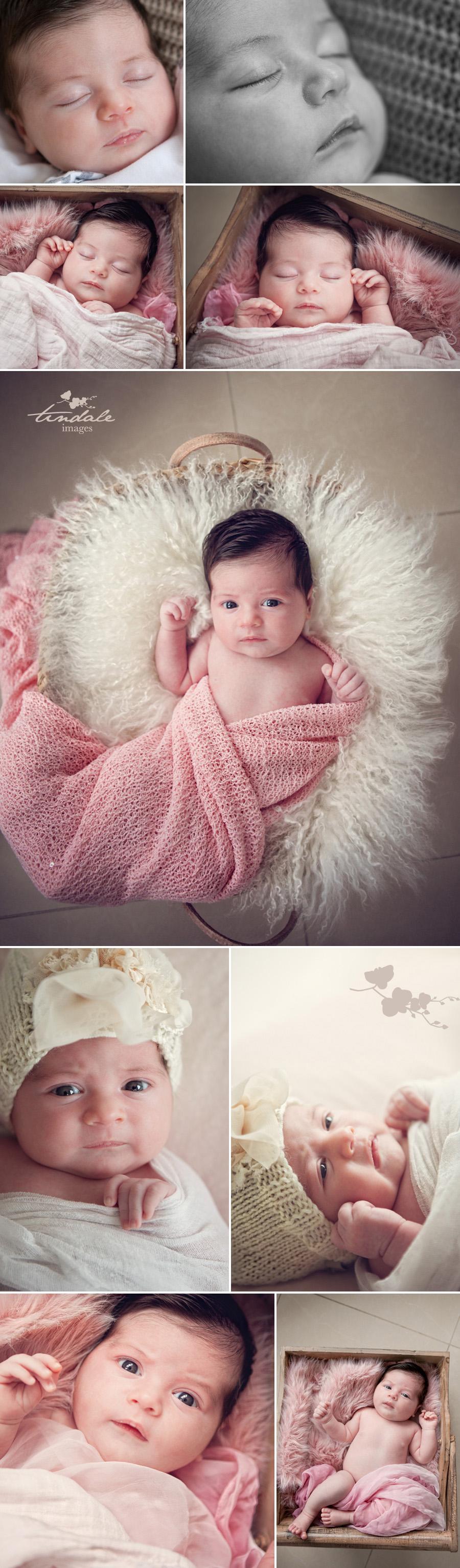 daddy's little girl - sutherland shire newborn photographer