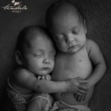 two little blessings - sutherland shire newborn photographer