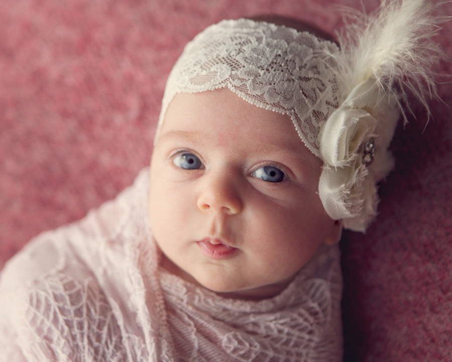 storyboard 5 adored baby sister   sutherland shire newborn photographer
