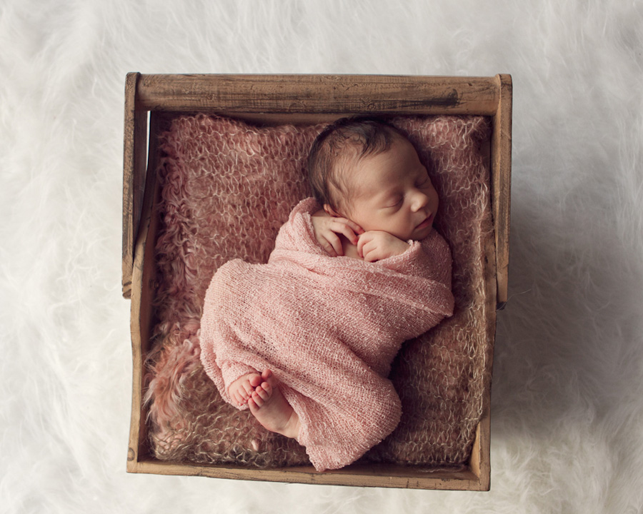 storyboard 71 sweet little sister   sutherland shire newborn photographer