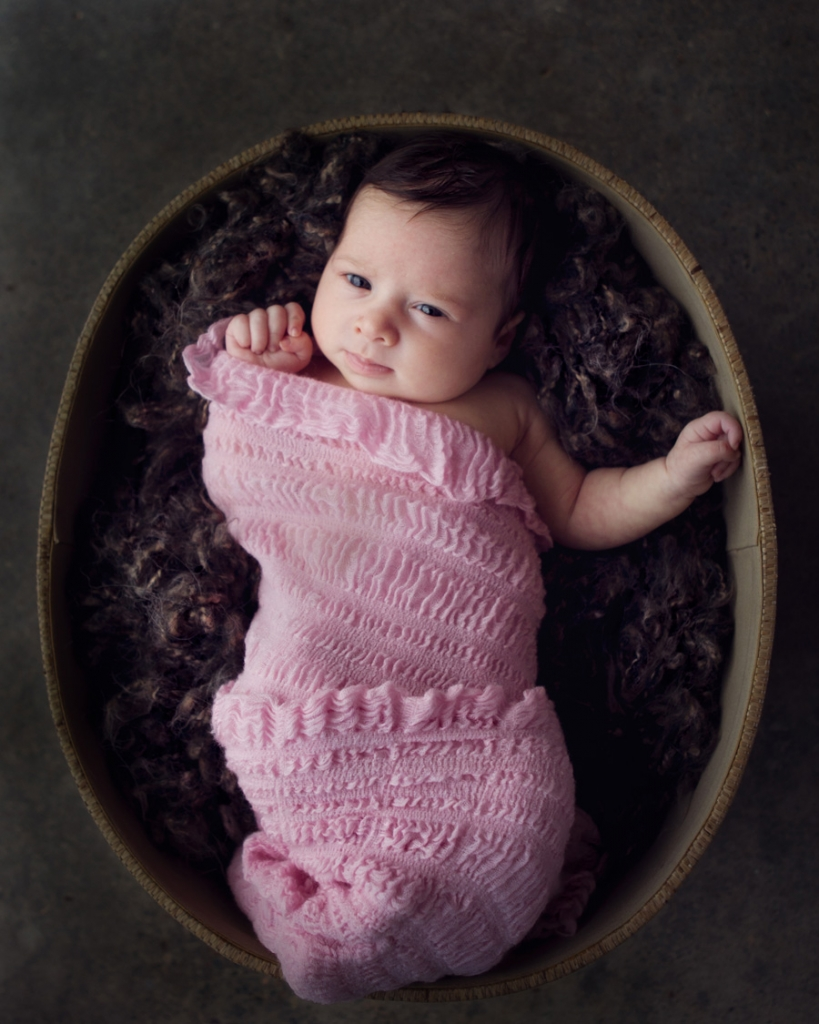 storyboard 18 819x1024 newest member   sutherland shire family photographer