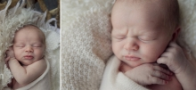 old soul - sutherland shire newborn photographer