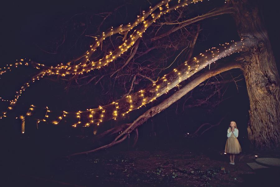 storyboard 83 Jaspers Brush Divine Wedding   sutherland shire wedding photographer
