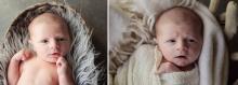 wide eye - sutherland shire newborn photographer