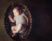 8 week old handsomeness - sutherland shire baby photographer