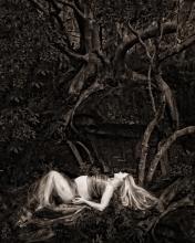 in a land far far away.. - sutherland shire maternity photographer