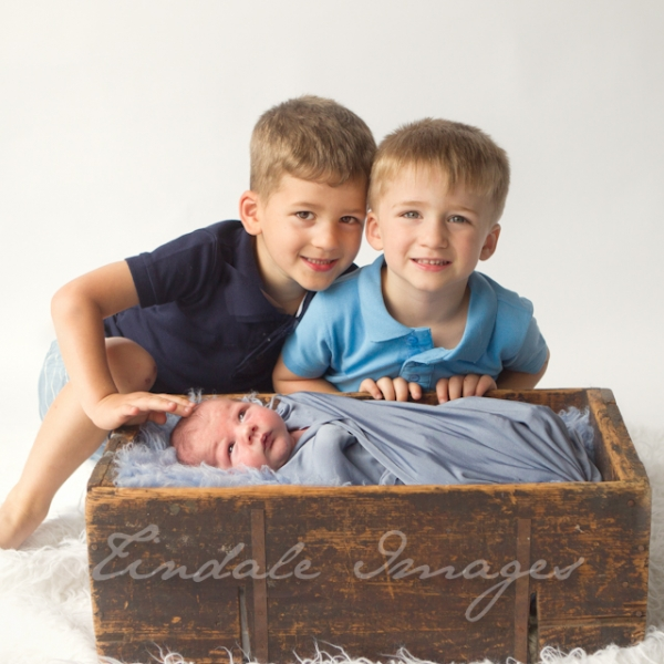 little - sutherland shire newborn photographer