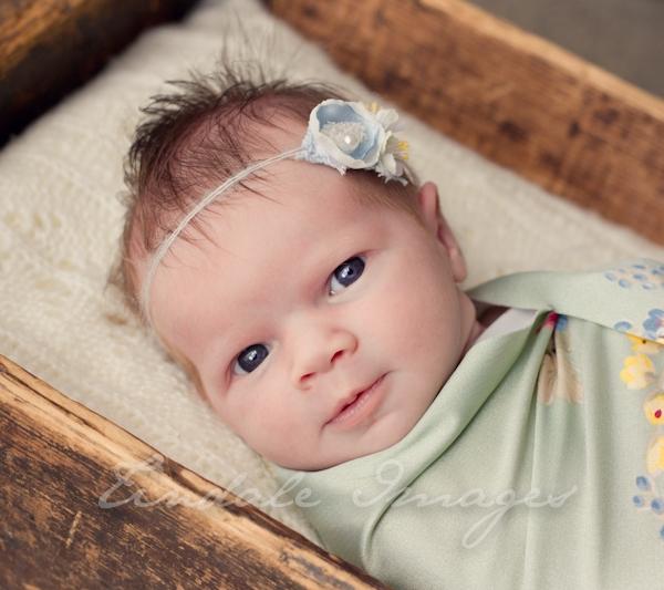 pretty - sutherland shire newborn photographer