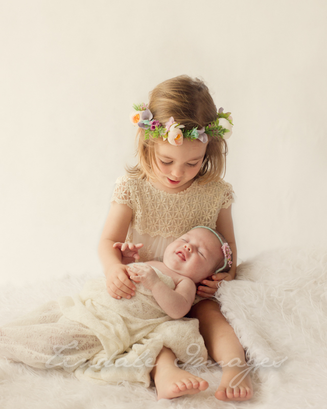 blog 210 sisters   sutherland shire newborn photographer