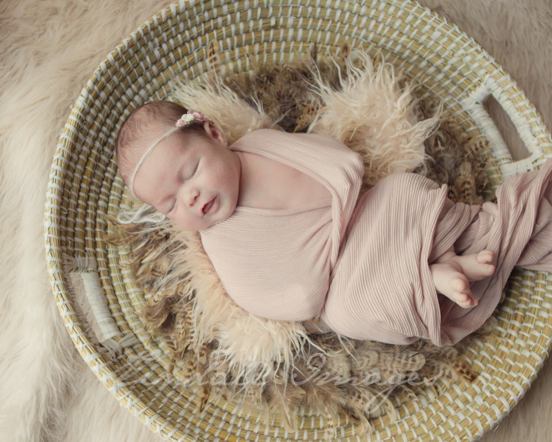 blog 89 sisters   sutherland shire newborn photographer