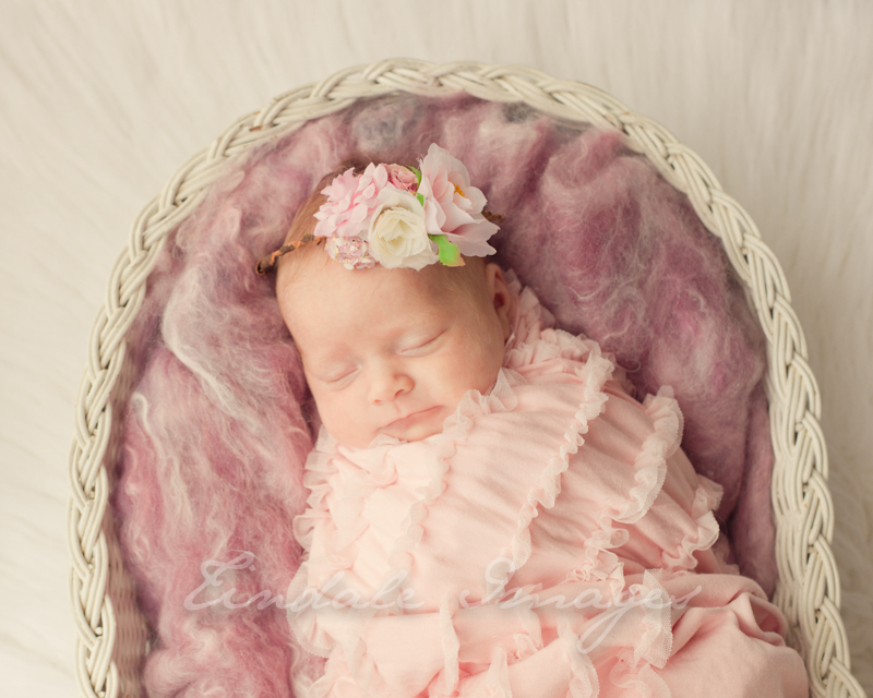 blog 91 pretty   sutherland shire newborn photographer