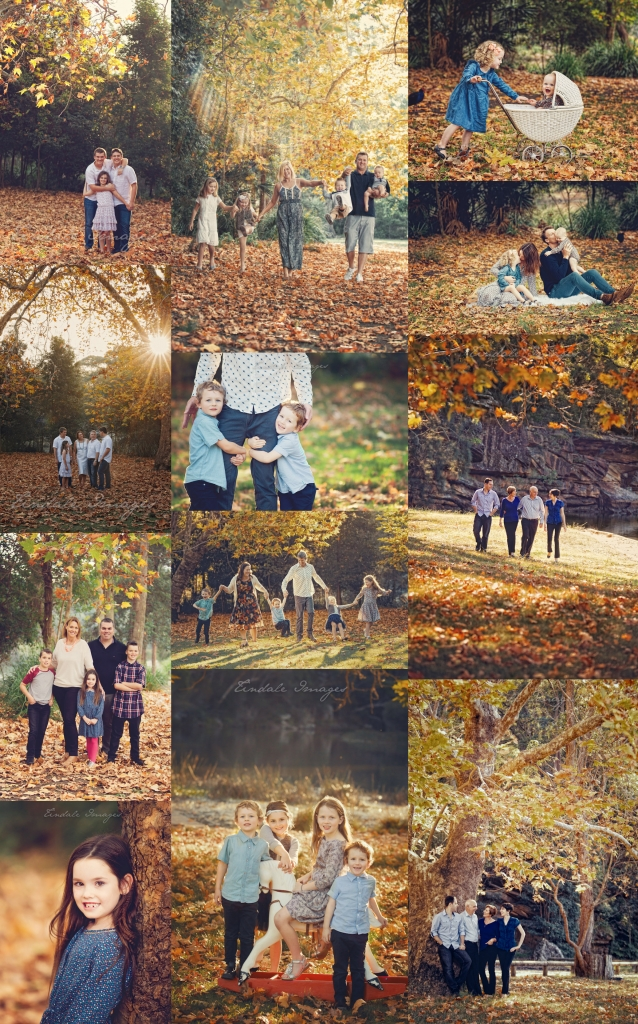 autumn 638x1024 autumn delight  sutherland shire family photography