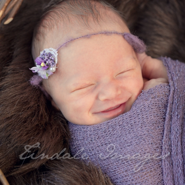 tiny missy - sutherland shire newborn photographer