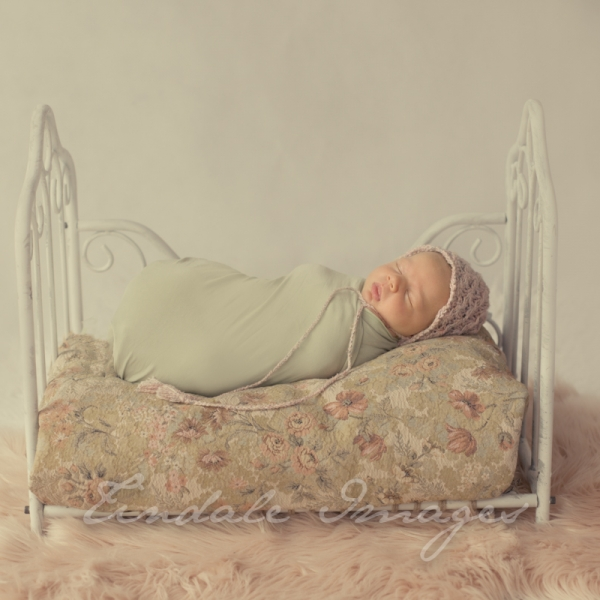 5 week old beauty - sutherland shire newborn photographer