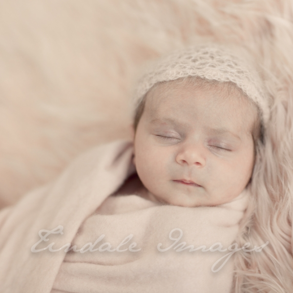 and then there were 3.. - sutherland shire newborn photographer