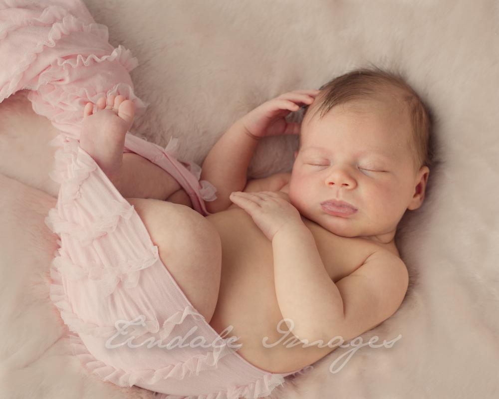Blog 27 5 week old beauty sutherland shire newborn photographer