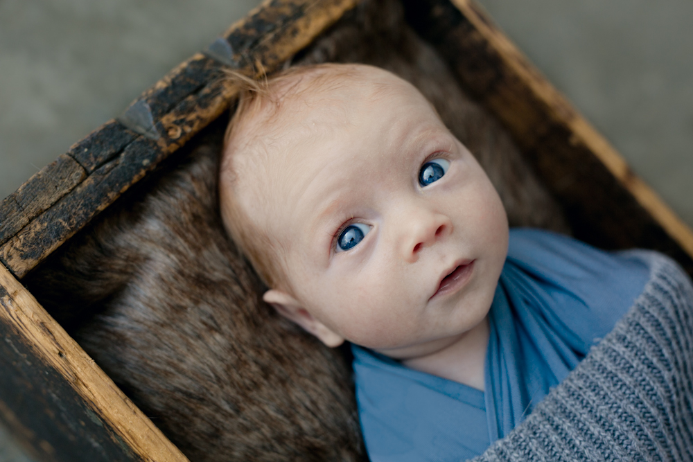 blog 311 blue eyes   sutherland shire newborn photographer