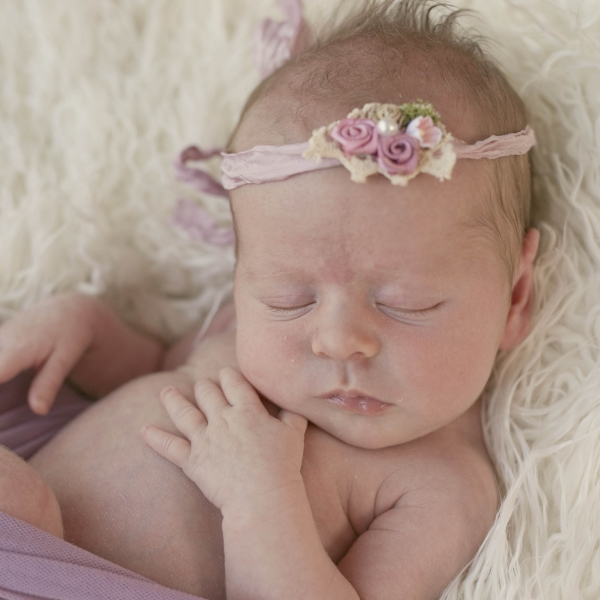 tiny - sutherland shire newborn photographer