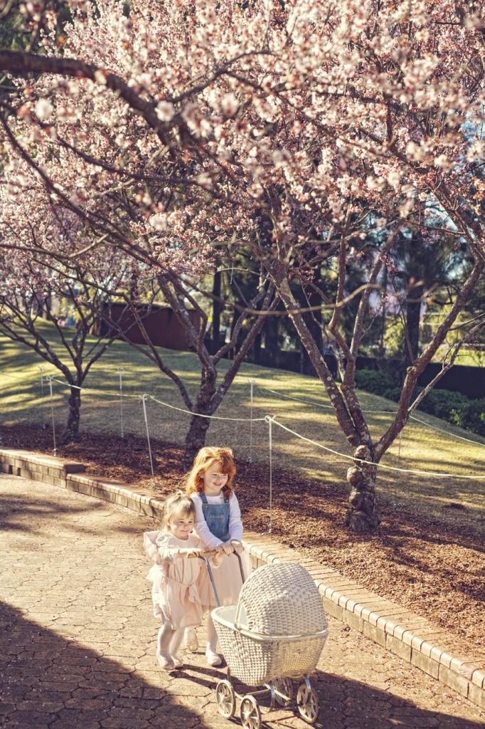 storyboard 36 682x1024 spring has sprung   sutherland shire children photographer