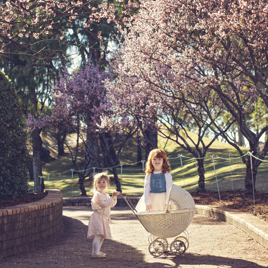 storyboard 37 spring has sprung   sutherland shire children photographer