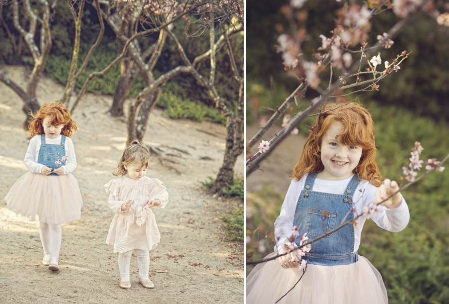 storyboard 41 spring has sprung   sutherland shire children photographer