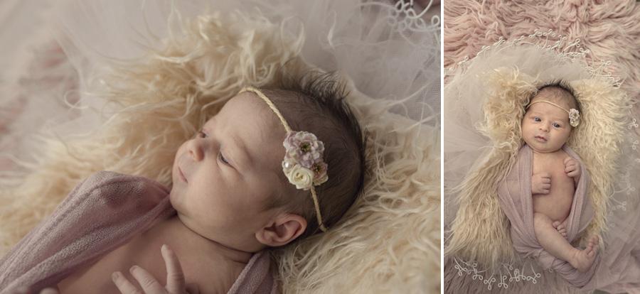 storyboard 55 little missy   sutherland shire newborn photographer