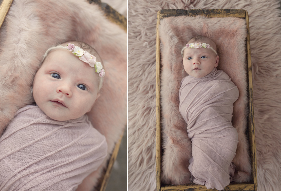 storyboard 141 little doll   sutherland shire newborn photographer