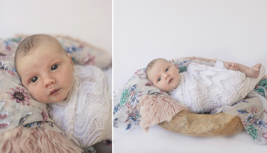 storyboard 161 little doll   sutherland shire newborn photographer