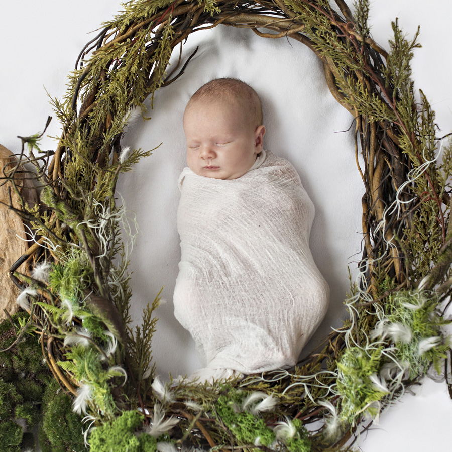 storyboard 18 handsome little man   sutherland shire newborn photographer