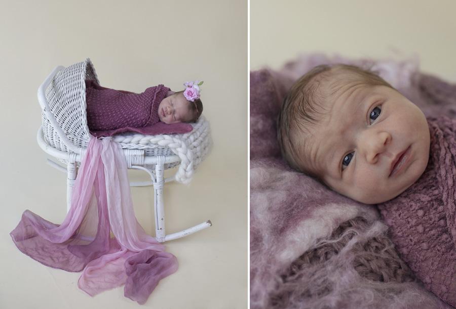 storyboard 19 little rainbow missy   sutherland shire newborn photographer