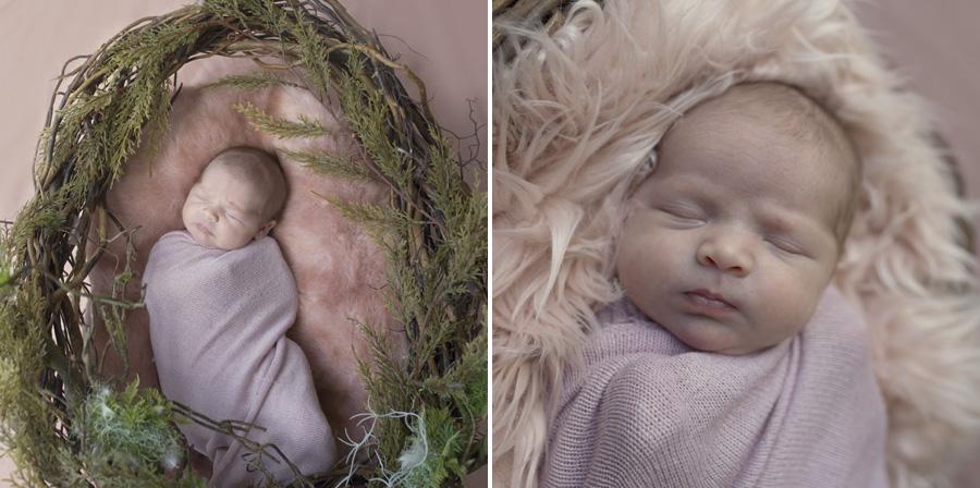 storyboard 42 pretty little missy   sutherland shire newborn photographer