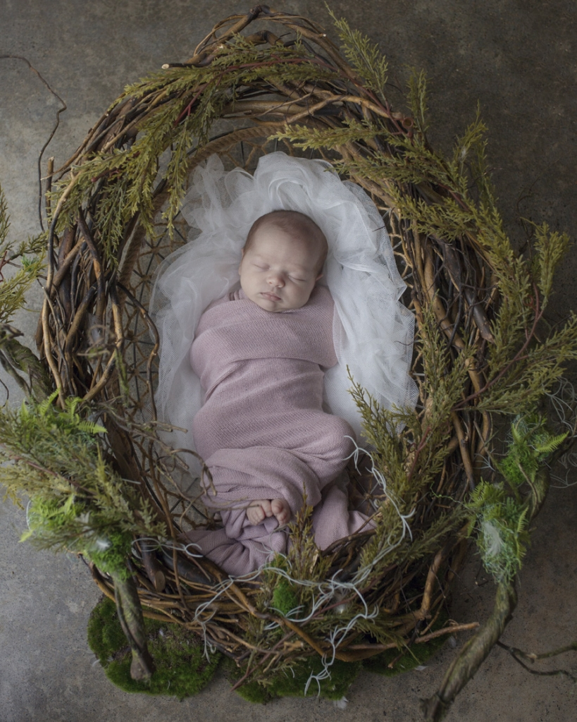 storyboard 43 819x1024 pretty little missy   sutherland shire newborn photographer