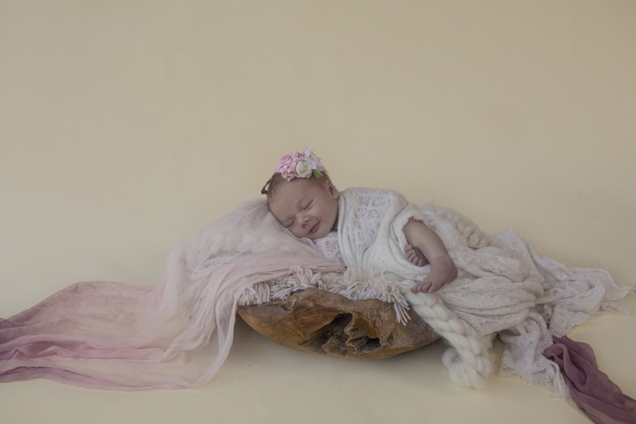 storyboard 28 little ballerinas..   sutherland shire newborn photographer