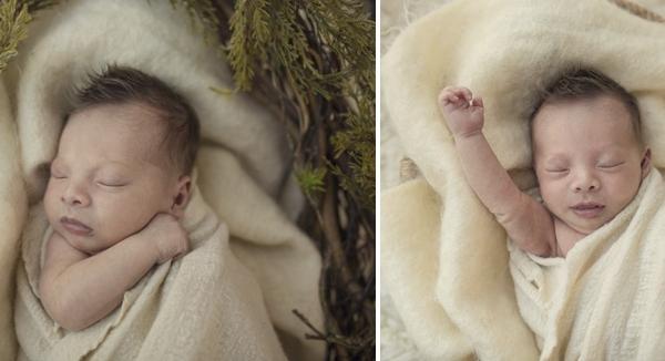 little miracle man - sutherland shire newborn photographer