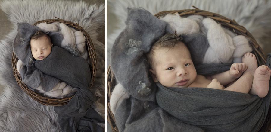 storyboard 108 little miracle man   sutherland shire newborn photographer