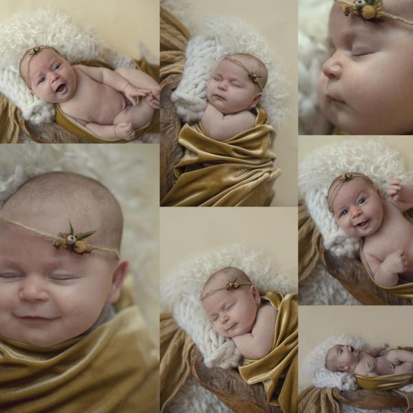 miss chubby cheeks - sutherland newborn photographer