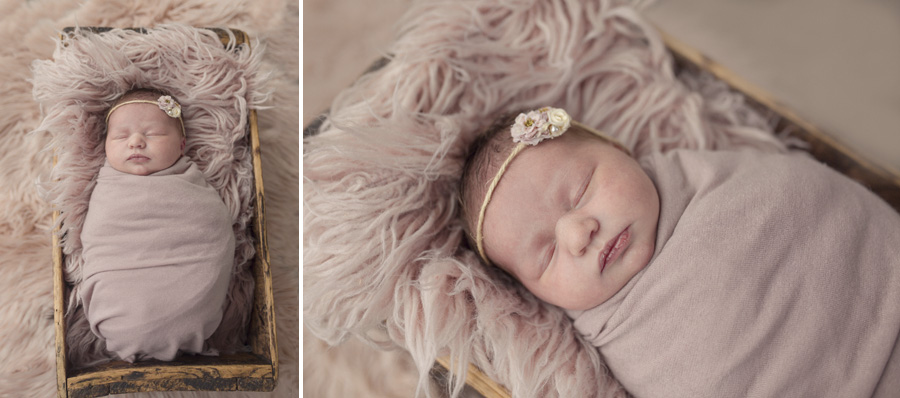storyboard 161 pretty   sutherland shire newborn photographer