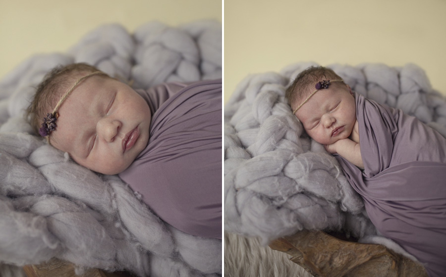 storyboard 171 pretty   sutherland shire newborn photographer