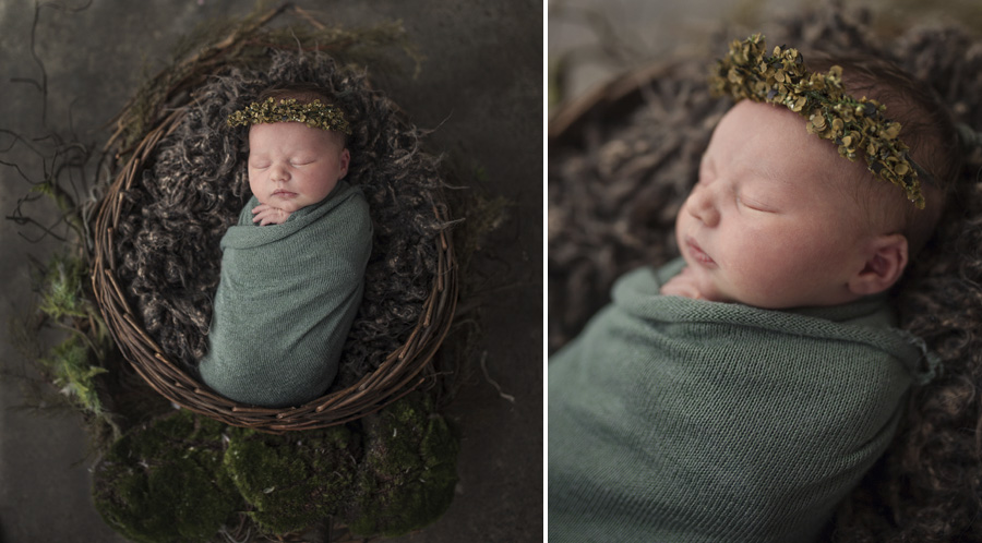 storyboard 181 pretty   sutherland shire newborn photographer