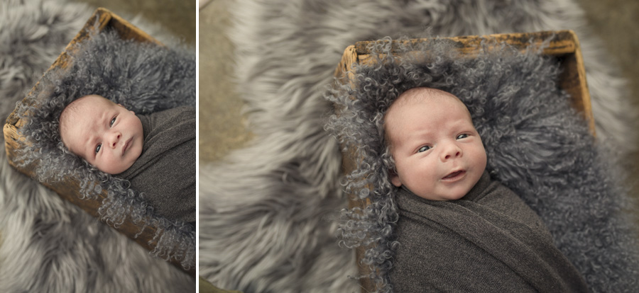 storyboard 201 blue steel   sutherland shire newborn photographer