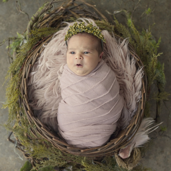 beautiful little missy - sutherland shire newborn photographer