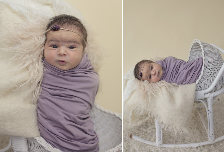 storyboard 40 beautiful little missy   sutherland shire newborn photographer