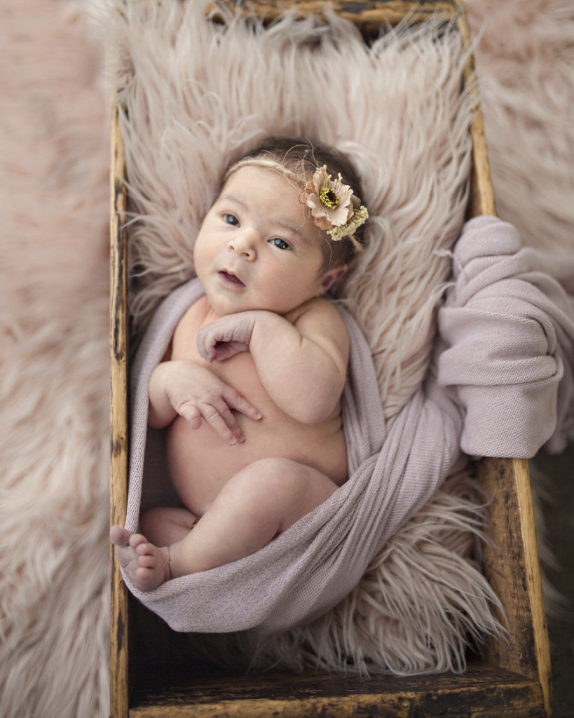 storyboard 42 819x1024 beautiful little missy   sutherland shire newborn photographer