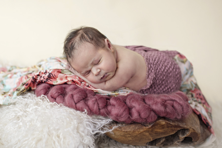 storyboard 49 beautiful little missy   sutherland shire newborn photographer