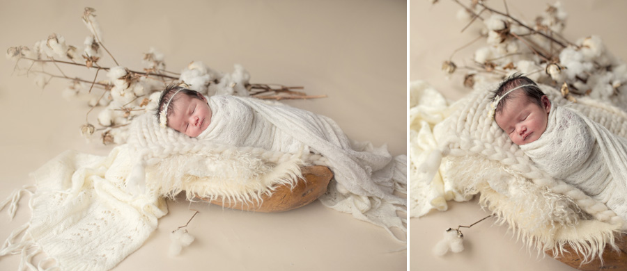 storyboard 10 pretty   sutherland shire newborn photographer
